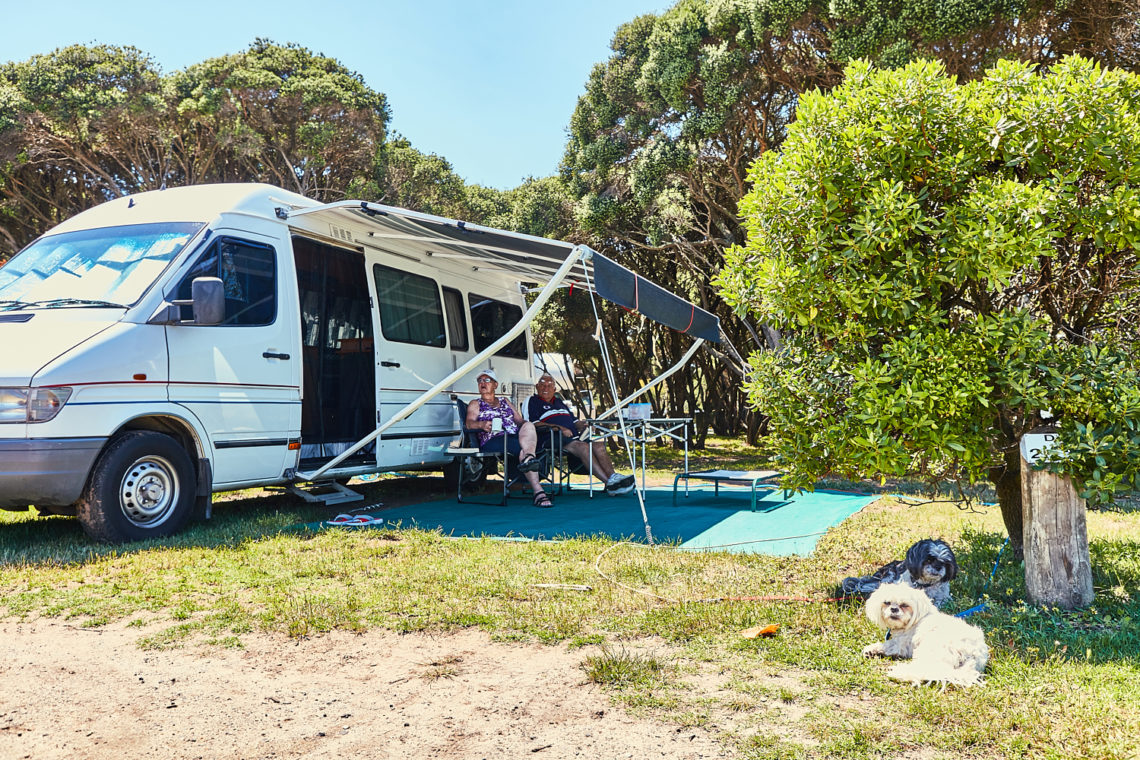 Dog friendly sites - Anglesea Family Caravan Park