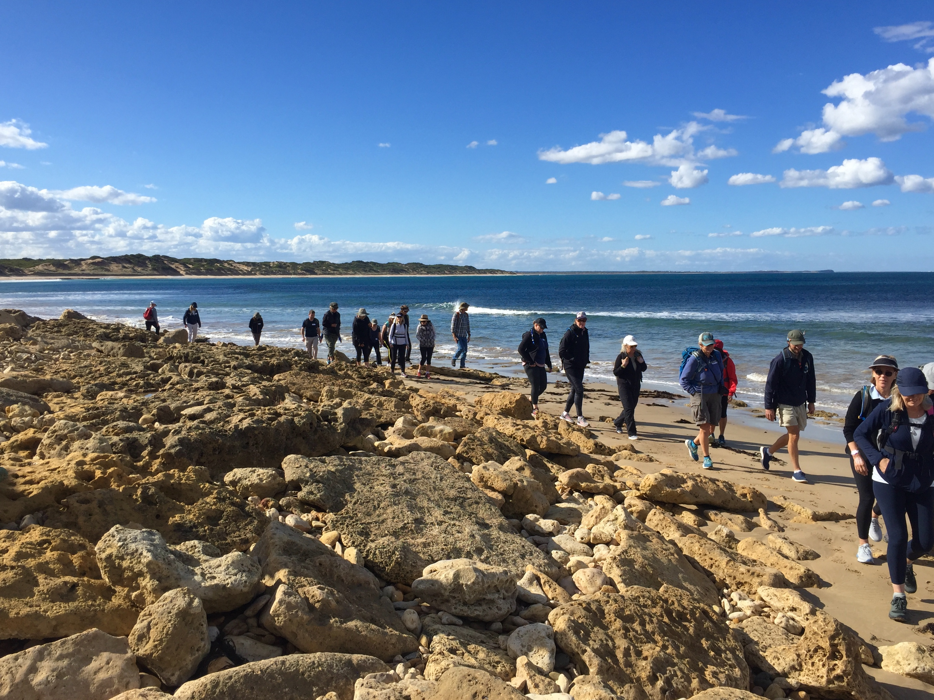 Guided Surf Coast Walk on offer.